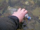 Походный фильтр для воды Аквафор Универсал, применение для очистки воды в полевых условиях, обзор