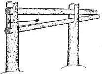 Кулемки, деревянные ловушки давящего типа для ловли пушных зверей, соболя и куницы, изготовление, установка, настройка