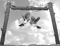 Ловушка-жердь для летающих птиц с двумя петлями