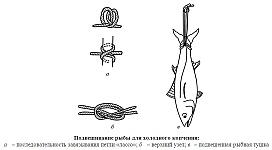 Способы подвешивания рыбы для холодного копчения