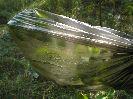 Поиск и добыча воды в лесу