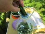 Вымытые свежие огурцы помещаем в бутылку так, чтобы они распологались в ней не очень плотно