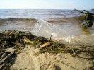 Простейшие ловушки для рыб, самодельная ловушка для рыб из бутылки своими руками при выживании в экстремальных условиях