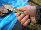 Складной нож Spyderco Military D2, обзор, отзыв, тест и впечатления