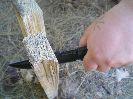 Орлан-2 без особых проблем способен поколоть дрова для костра