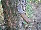 Нож Терек-2 на удивление хорошо метается