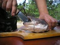 Тест туристического ножа Варан от Кизляр при разделке рыбы и приготовлении ухи