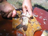 По рыбе с ножом Варан он особо не церемонился, резал, рубил, ломал и кромсал