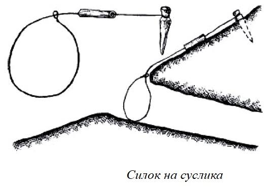 силки как делать